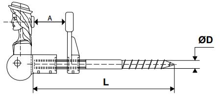 scheda Fermapersiana testa di pastorella